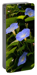 Portable Battery Charger featuring the photograph Blue Morning Glories by Kay Novy