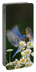 Portable Battery Charger featuring the photograph Bluebirds Picnicking In The Daisies by Randall Branham