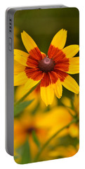 Portable Battery Charger featuring the photograph Blush-eyed Susan by JD Grimes