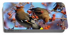 Bohemian Waxwings Portable Battery Charger