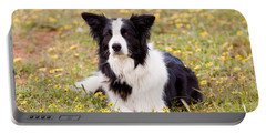 Border Collie In Field Of Yellow Flowers Portable Battery Charger
