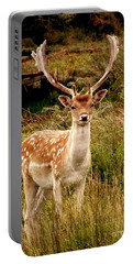 Wildlife Fallow Deer Stag Portable Battery Charger by Linsey Williams