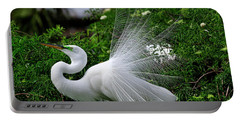Brilliant Feathers Portable Battery Charger