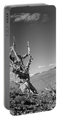 Bristlecone Pine And Cloud Portable Battery Charger