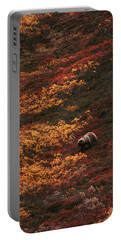 Brown Bear Denali National Park Portable Battery Charger