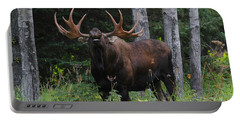 Portable Battery Charger featuring the photograph Bull Moose Flehmen by Doug Lloyd