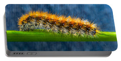 Butterfly Caterpillar Larva On The Stem Portable Battery Charger