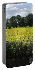 Buttonwood Farm Portable Battery Charger