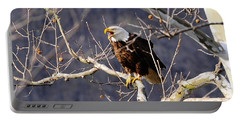 Portable Battery Charger featuring the photograph Calling For His Mate by Randall Branham
