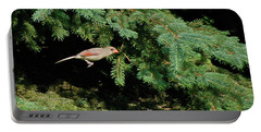 Portable Battery Charger featuring the photograph Cardinal Just A Hop Away by Thomas Woolworth