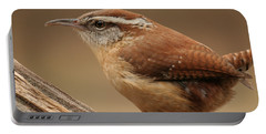 Carolina Wren Portable Battery Charger