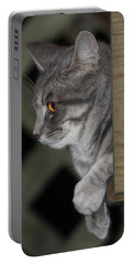 Cat On Steps Portable Battery Charger