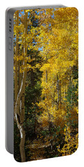 Portable Battery Charger featuring the photograph Changing Seasons by Vicki Pelham