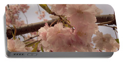 Portable Battery Charger featuring the photograph Cherry Blossom 2 by Andrea Anderegg