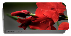 Chromatic Gladiola Portable Battery Charger