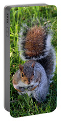 City Squirrel Portable Battery Charger