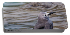 Portable Battery Charger featuring the photograph Clark's Nutcracker2 by Cheryl Baxter