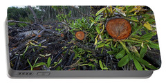 Clear Cut Red Mangrove Stand Portable Battery Charger