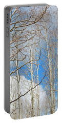 Cloudy Aspen Sky Portable Battery Charger