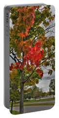 Portable Battery Charger featuring the photograph Cold Autumn Breeze  by Michael Frank Jr