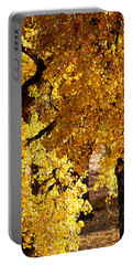 Colorado Gold Portable Battery Charger by Colleen Coccia