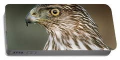 Portable Battery Charger featuring the photograph Cooper's Hawk by Doug Herr