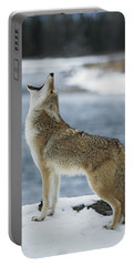 Coyote Howling On Snowy Riverbank Portable Battery Charger