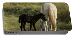 Cracker Foal And Mare Portable Battery Charger