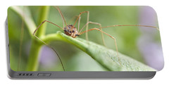 Portable Battery Charger featuring the photograph Creepy Crawly Spider by Jeannette Hunt