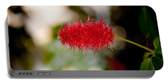 Portable Battery Charger featuring the photograph Crimson Bottle Brush by Tikvah's Hope