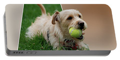 Portable Battery Charger featuring the photograph Cruz My Ball by Thomas Woolworth
