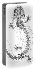 Cryptobranchus, Living Fossil Portable Battery Charger by Science Source