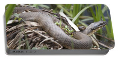 Portable Battery Charger featuring the photograph Cuddling Snakes by Jeannette Hunt