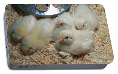 Portable Battery Charger featuring the photograph Cute And Fuzzy Chicks by Chalet Roome-Rigdon