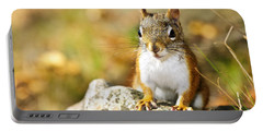 Cute Red Squirrel Closeup Portable Battery Charger