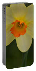 Daffodilicious Portable Battery Charger