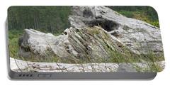 Dandelion Crow - On Oregon Coast Driftwood  Portable Battery Charger