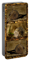 Portable Battery Charger featuring the photograph Dead Rosebud Triptych by Steve Purnell