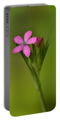 Portable Battery Charger featuring the photograph Deptford Pink by JD Grimes