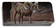 Desert Bighorn Sheep Ram I Portable Battery Charger