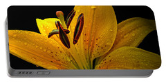 Portable Battery Charger featuring the photograph Dew On The Daylily by Debbie Portwood