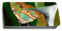 Portable Battery Charger featuring the photograph Dido Longwing Butterfly by Peggy Franz