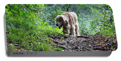 Dog Walking Portable Battery Charger
