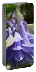 Portable Battery Charger featuring the photograph Double Columbine Named Light Blue by J McCombie
