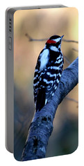 Portable Battery Charger featuring the photograph Downy Woodpecker by Elizabeth Winter