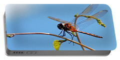 Dragonfly On A Vine Portable Battery Charger by Kay Lovingood