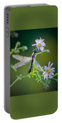 Dragonfly Portable Battery Charger