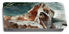 Driftwood-wisconsin Point Portable Battery Charger