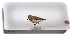 Dunlin In Winter Portable Battery Charger