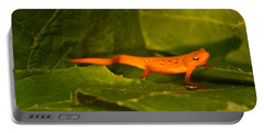 Easterm Newt Nnotophthalmus Viridescens 3 Portable Battery Charger